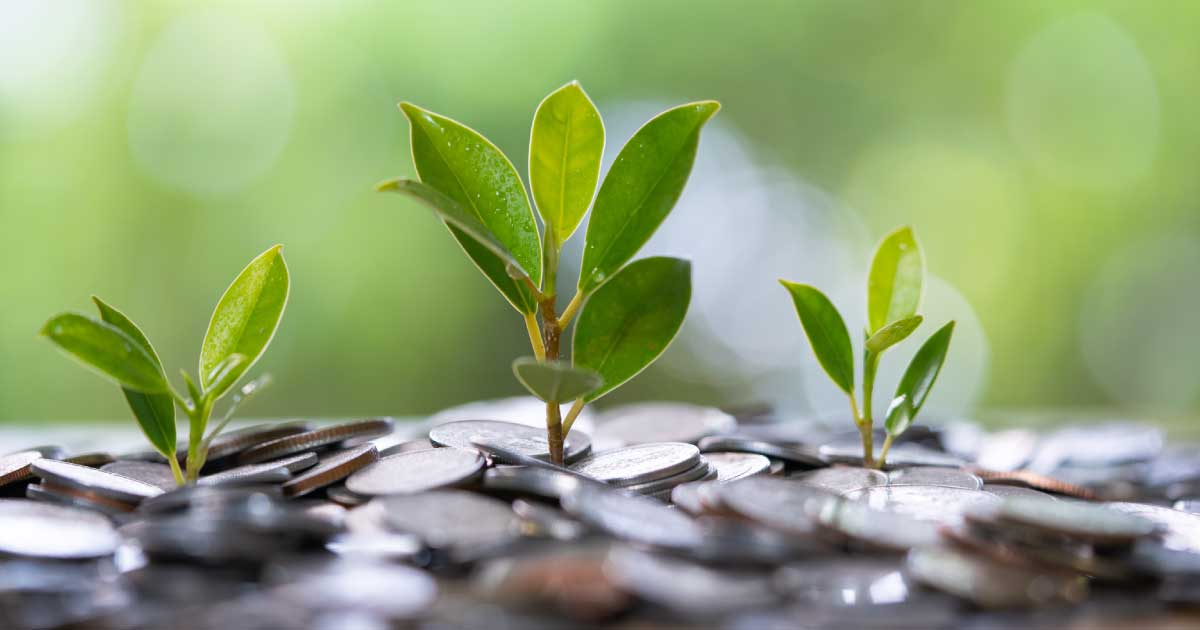 The growth of an investment